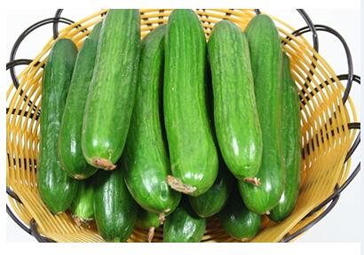 Fruit cucumber
