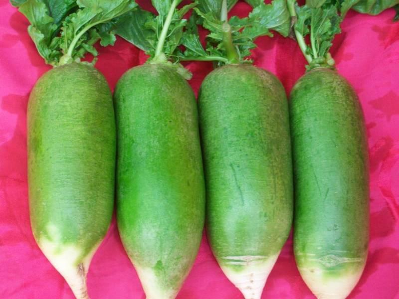 Fruit radish