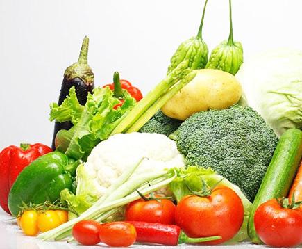 有机蔬菜种植的关键技术知识